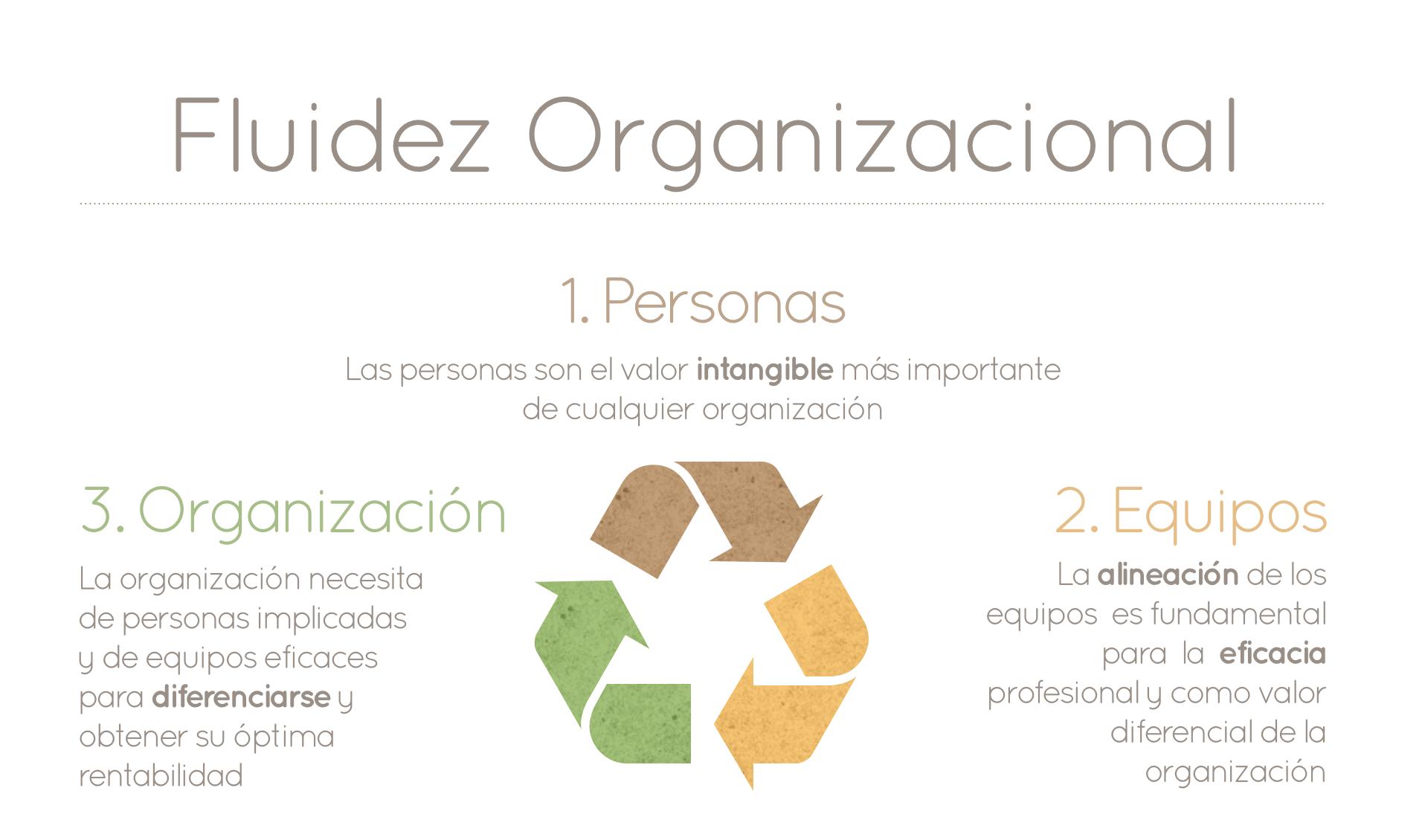 IO - Fluidez_Organizacional